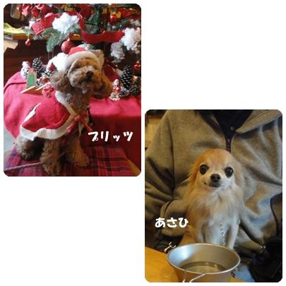 2013-12-81.jpg