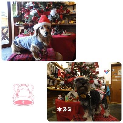 2013-12-83.jpg