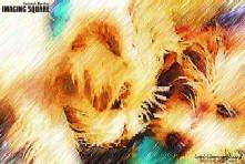 バナー9-5IMG_0549(色鉛筆)