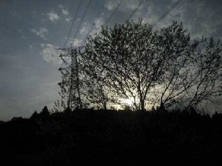4IMG_0984.jpg