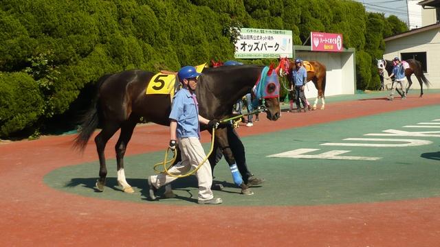 hukuyama0502-08.jpg