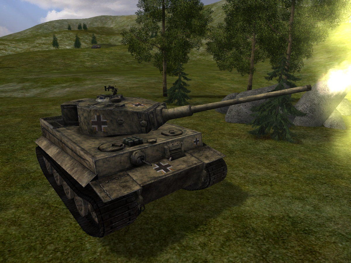 Tiger_mit_D-10_2.jpg