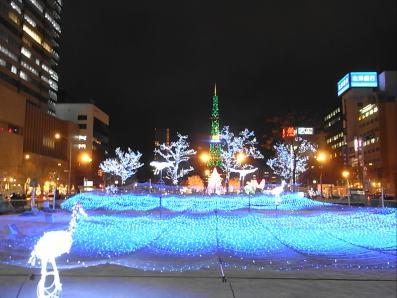 クリスマスイヴホワイトイルミ (3)