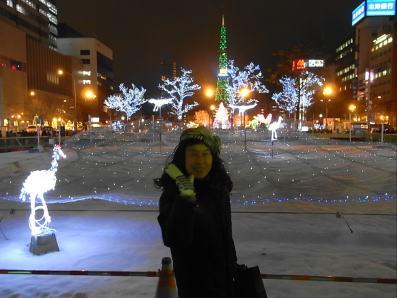 クリスマスイヴホワイトイルミ (14)