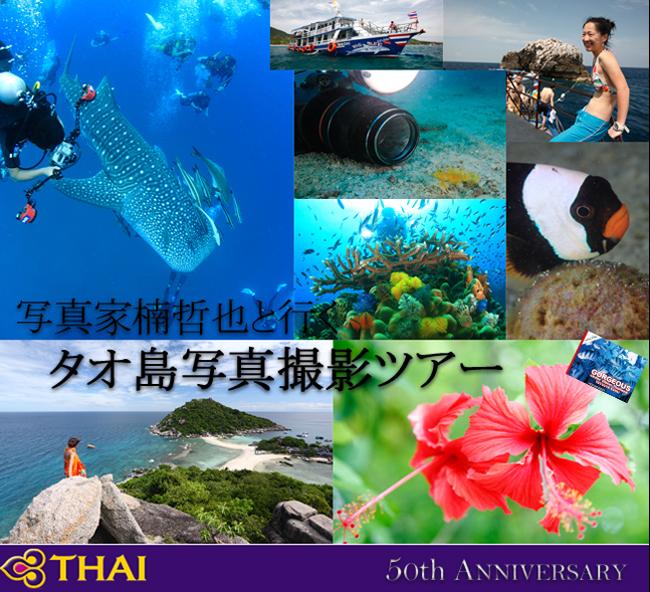 tetsu_tour.jpg