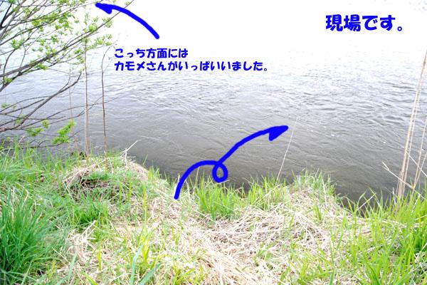 H220524_6.jpg