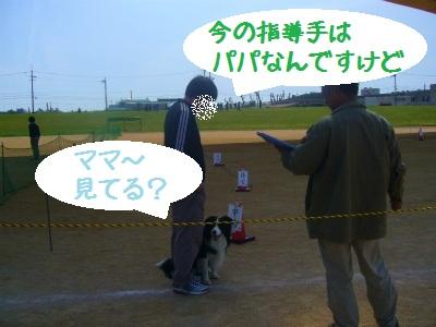 P1020878.jpg