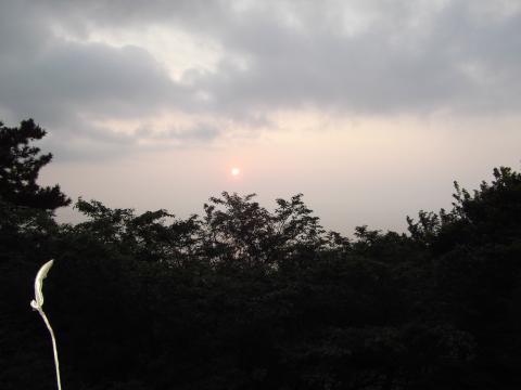和室から朝日