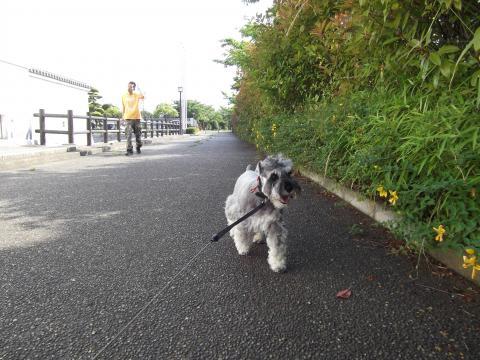 関宿城にてウィル