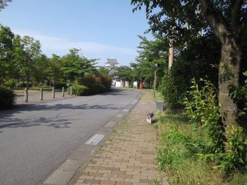 関宿城とウィル