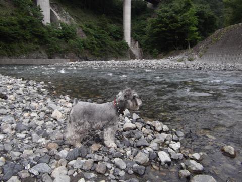 多摩川の源流