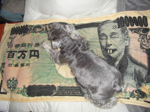 百万円にウィル