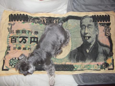 出歯銀行 百万円