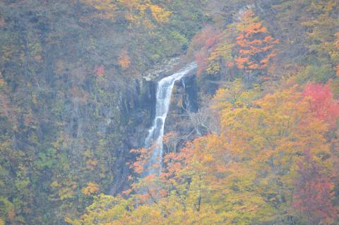 エコーライン滝見台より三階の滝