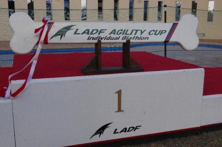 LADF AGIRITY Xmas CUP