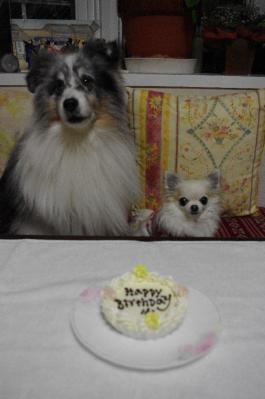 2 ケーキの前で