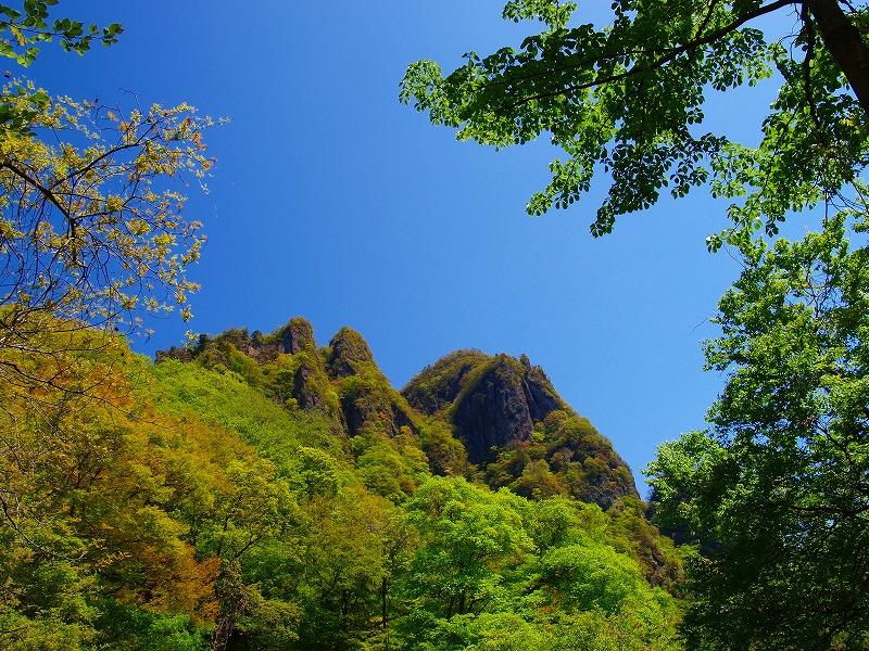 s-iyppP5155851新緑の山