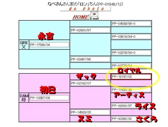 3_20140116081455a02.jpg