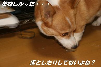 1_1270.jpg