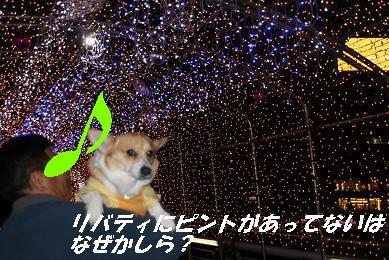 1_1506.jpg