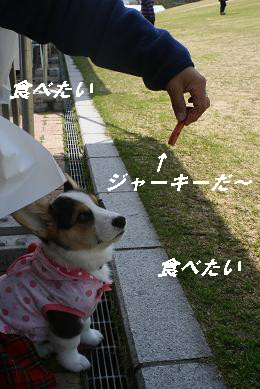 G_2543.jpg