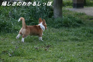 G_2758.jpg