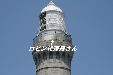 G_3916.jpg