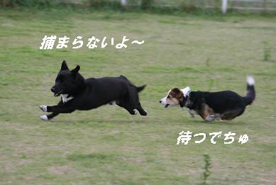 G_5358.jpg