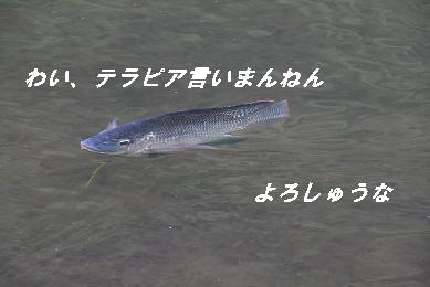 G_6821.jpg