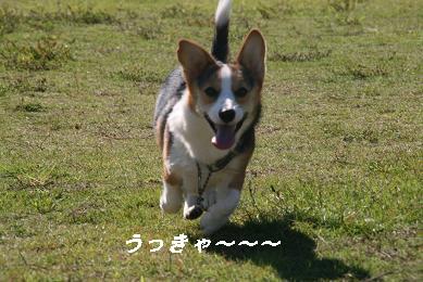 G_9389.jpg