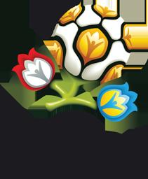 UEFA EURO 2012 (black)