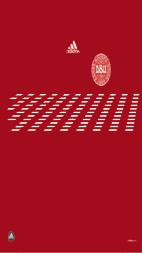 10-11デンマークホーム