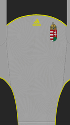10-11ハンガリーGK
