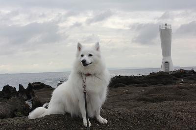 安房崎灯台と。
