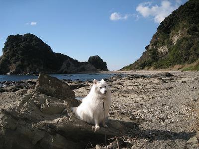 岩場もビーチもあるよ。