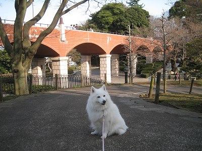 横浜チックな橋