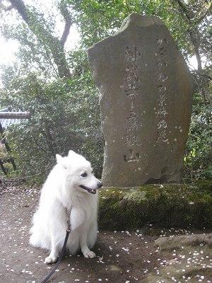 神武寺と鷹取山
