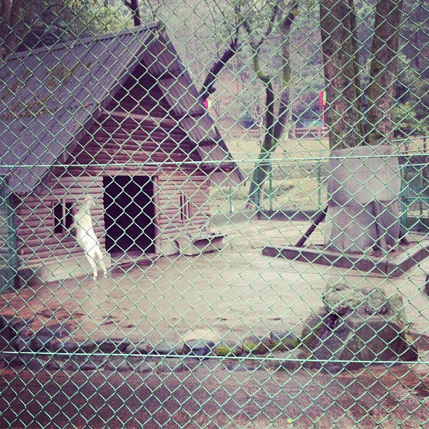 たつの動物園