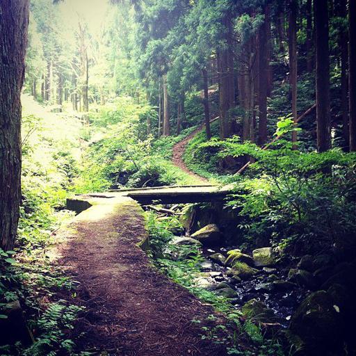 兵庫県北部の秘境、シワガラの滝