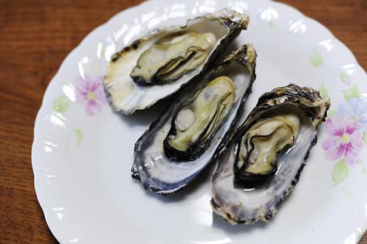 室津の牡蠣