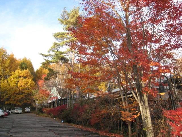 2012110608八ヶ岳蓼科 (19)