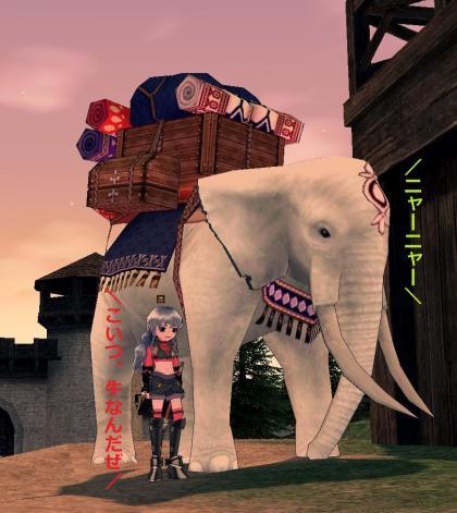 増産?象さん!_convert_20111013210907