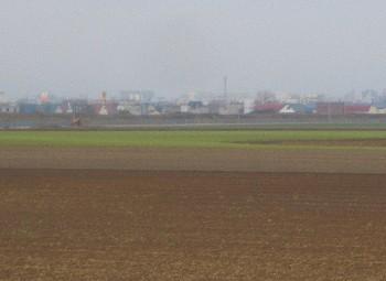 20120510 タマネギ畑.jpg