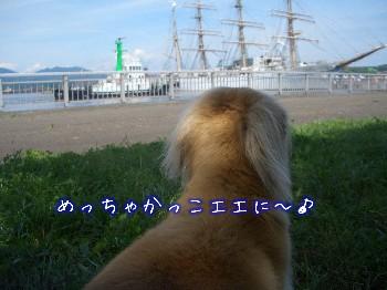 ロナウドと帆船.jpg