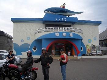 クジラ館2012.jpg
