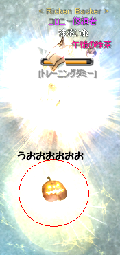 20101022-10.png
