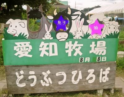 b1_20100809090252.jpg