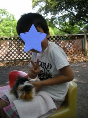 b4_20100509221305.jpg
