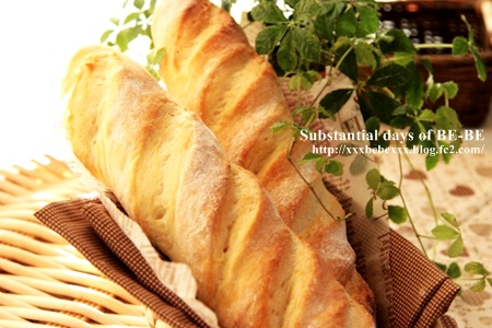 bp20111124a.jpg