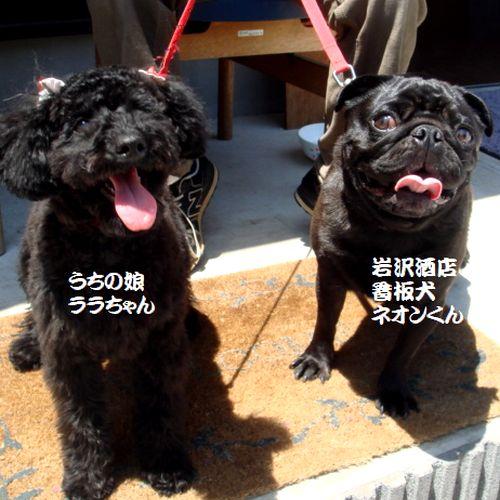 blog110119a.jpg